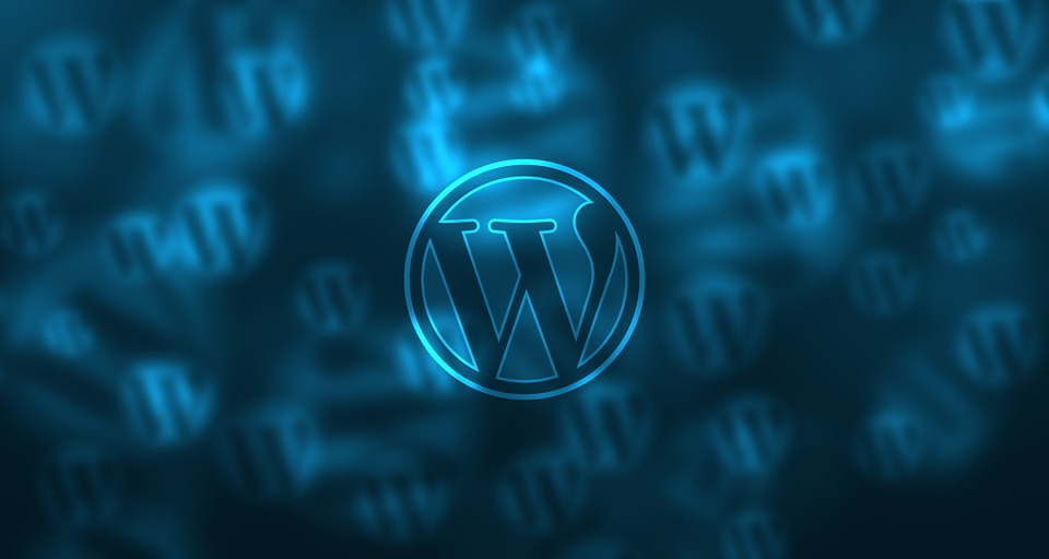Step by step instructions to conduct an ecommerce Word Press Website Audit like a Jedi