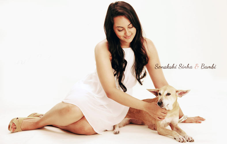 Sonakshi Sinha HD Wallpaper