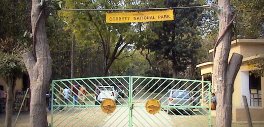 Jim Corbett National Park | Wild life of India