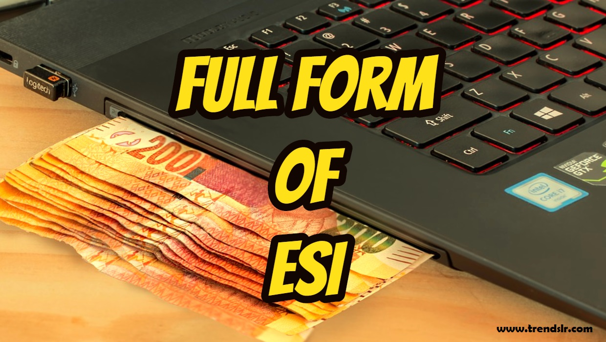 Full Form of ESI – What is the Full Form of ESI