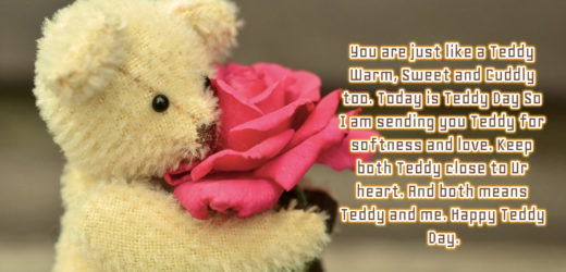 Teddy Day Date in 2020   Things to do on Teddy Day   Gift Ideas