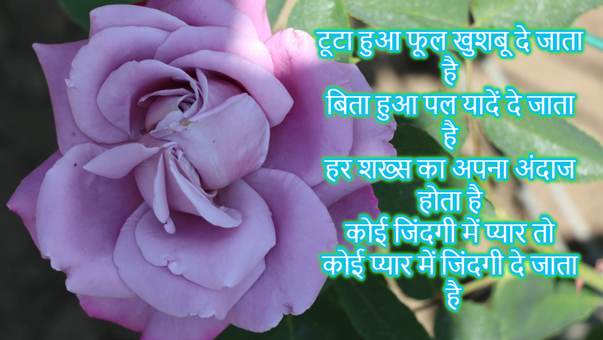Rose Day Shayari SMS in Hindi