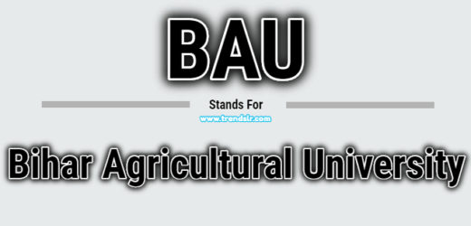 Full Form of BAU