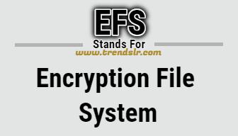 Full Form of EFS