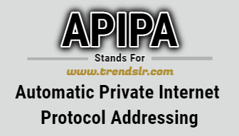 Full Form of APIPA
